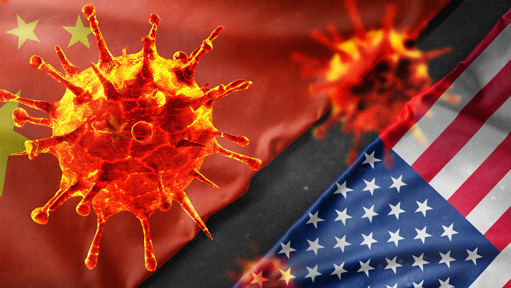 Image: Dave Hodges and JR Nyquist warn of China's plan to attack and destroy America while left-wing tyrants end all freedom by invoking coronavirus crackdowns
