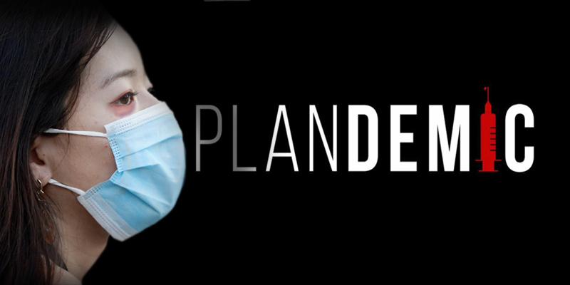 Image: Where to find the Plandemic documentary with Judy Mikovits in Portuguese, Greek, Spanish, Danish, French, Lithuanian, Turkish, Italian and English