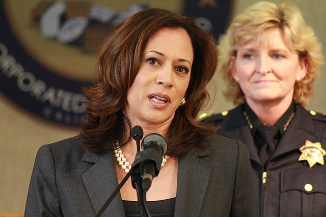 "Mainstream media: Any criticism of Kamala Harris is ""racism and sexism"""