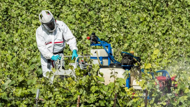 Researchers warn about the ecological disaster headed for humanity because of our overuse of pesticides