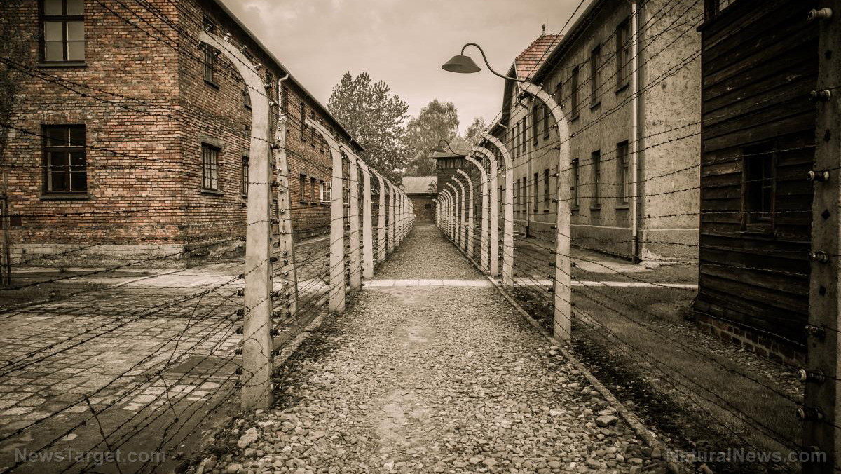 """Image: New York legislator wants to put coronavirus """"carriers"""" in concentration camps"""