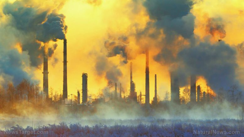 Here's why going green will backfire: Fossil fuel divestment will increase carbon emissions, warn experts