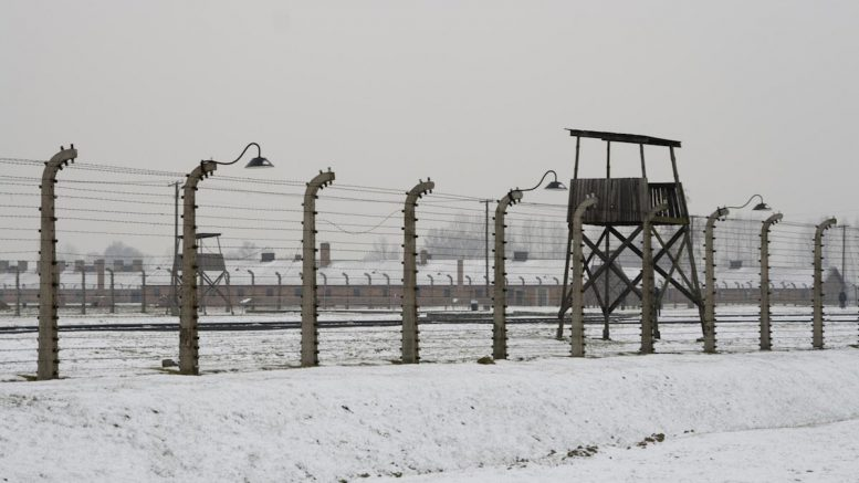 NY Senate just passed a concentration camp bill to forcibly throw people in camps, just like the Nazis did in World War II