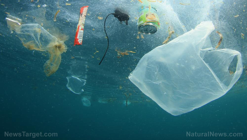 Image: Fast food packaging responsible for nearly half of all ocean plastics, study finds