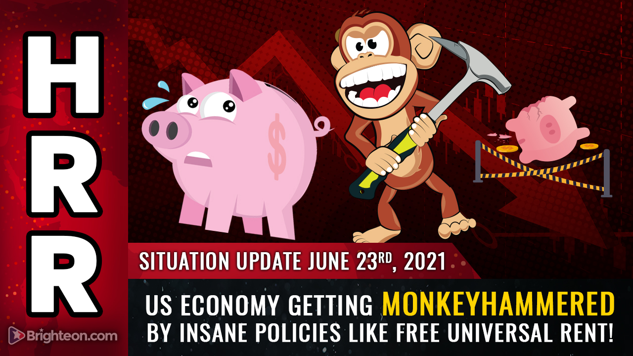 Image: US economy will get MONKEYHAMMERED by insane policies like free universal rent, now announced in California
