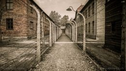 After throwing them in covid quarantine camps, German government also STRIPS prisoners of compensation payments to bankrupt them