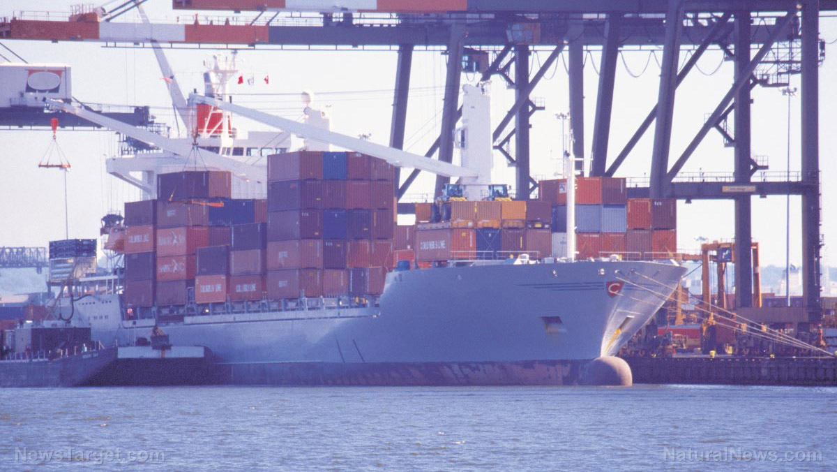 Image: Shipping workers warn of imminent global transport systems collapse